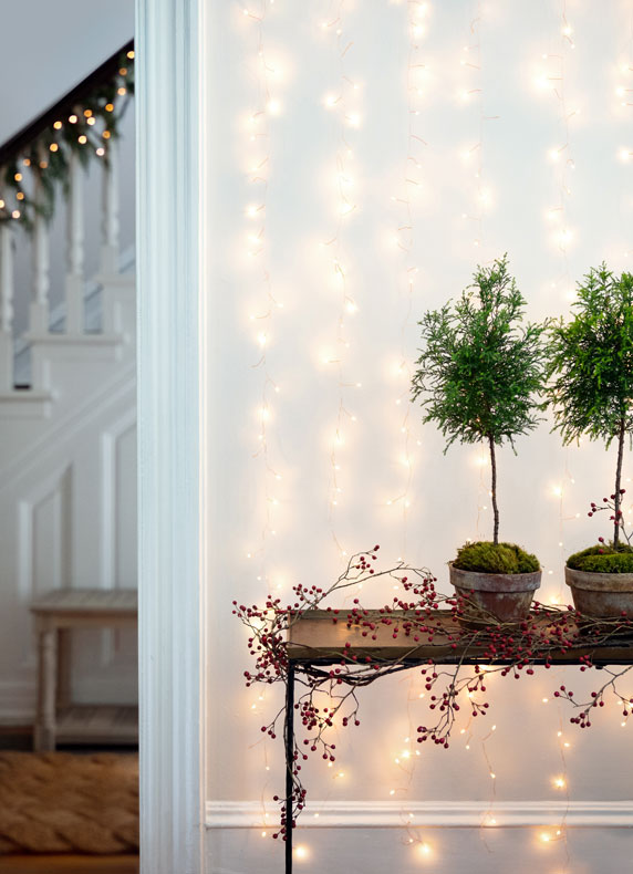 The Stargazer Curtain | + more holiday lights